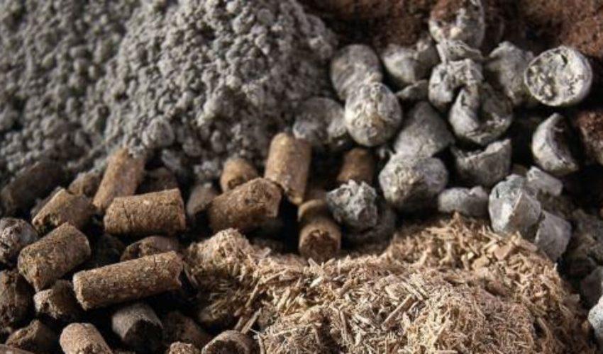 cropped-biomas1.jpg